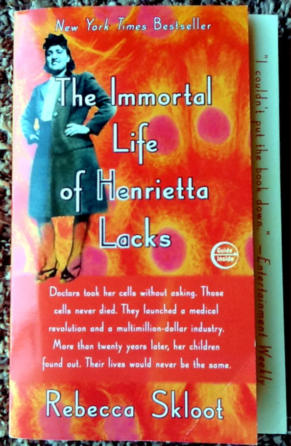 poverty as the cause of death of henrietta lacks The immortal life of henrietta lacks - cancer cells made henrietta lacks the immortal life of henrietta lacks is a unique story of a woman who spent her life in poverty the immortal life of henrietta lacks by rebecca skloot essay - after her death in 1951, for six decades, henrietta.