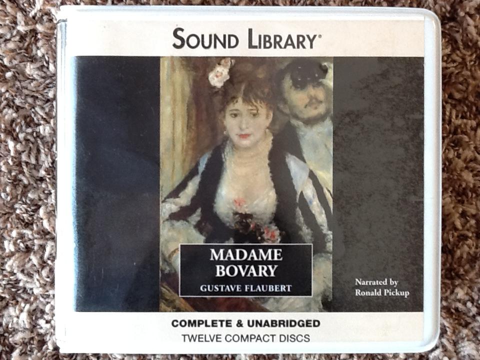 madame bovary analysis