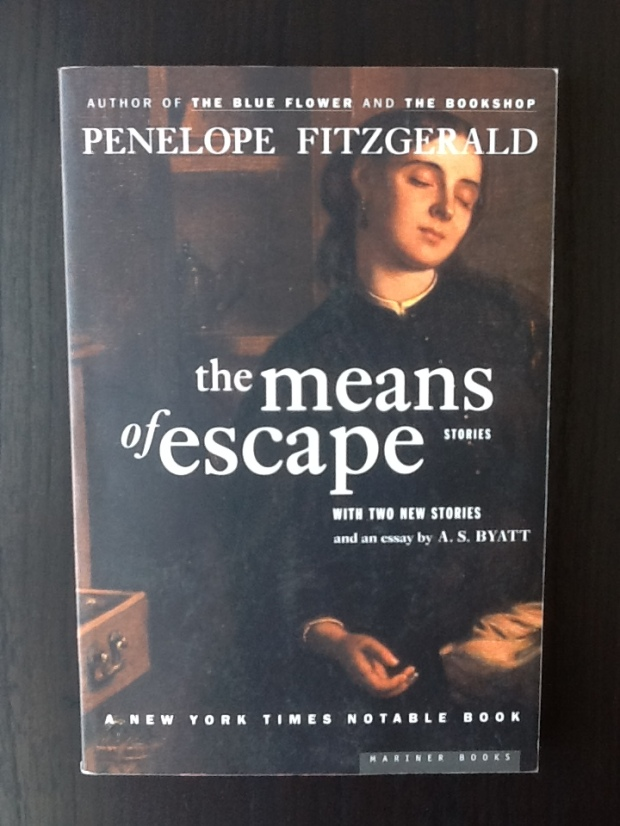 fitzgerald means of escape cover