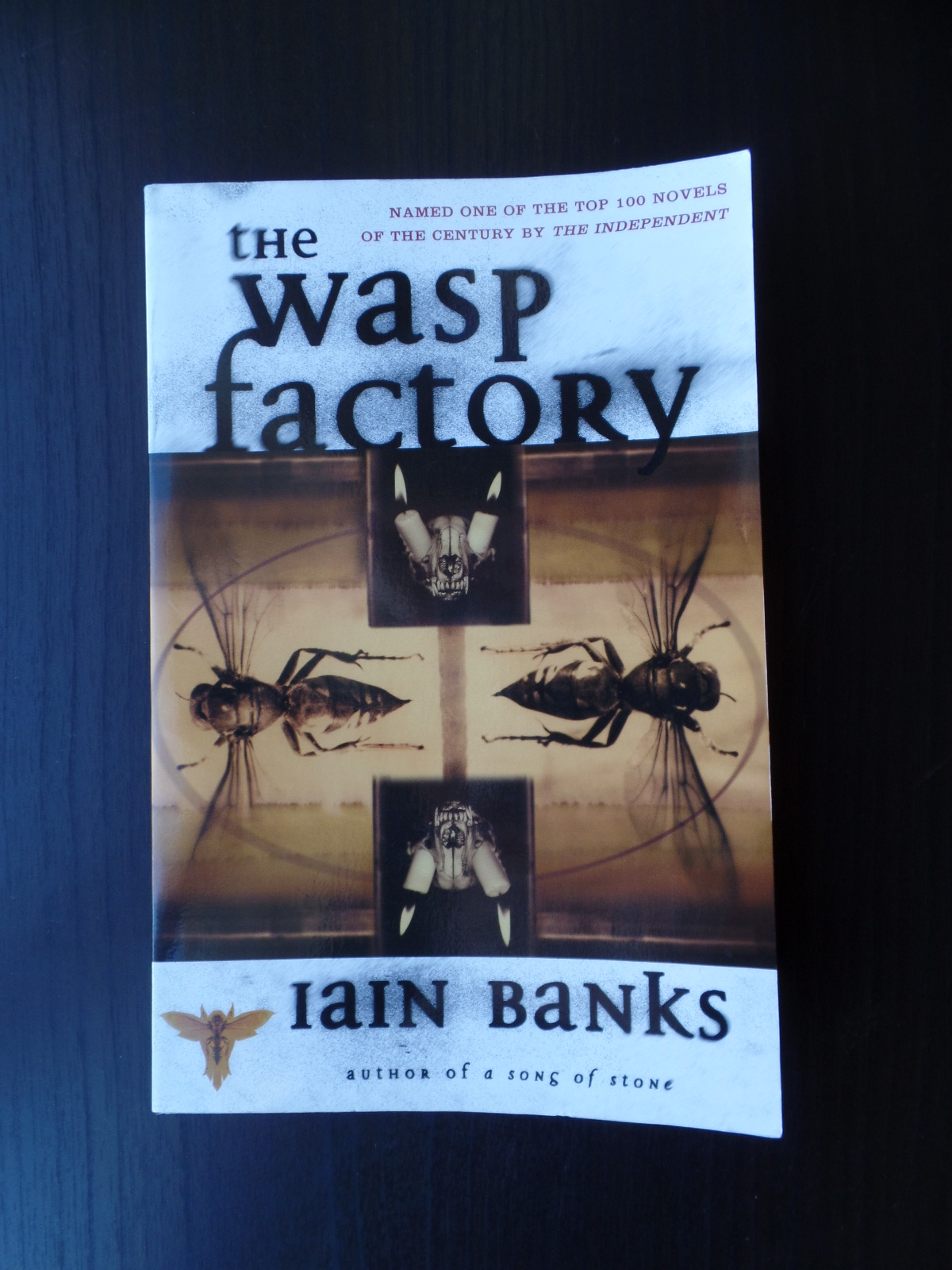 the wasp factory essays